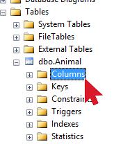 Adding All Columns 2